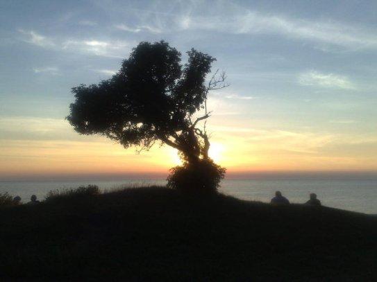 Solnedgång under Almedalsveckan. Foto: SIX News